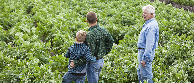 NFU: Concerns Linger Over Farm Credit